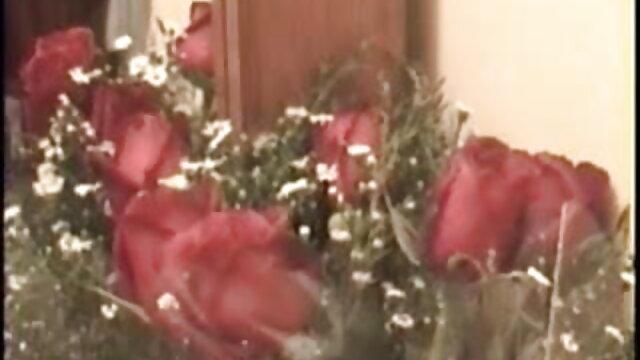 Rahyndee جیمز رابطے لینس پورن بازیگران هالیوود DVR